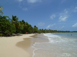 GreetingsfromRaf-Martinique-Plage des Salines-LR